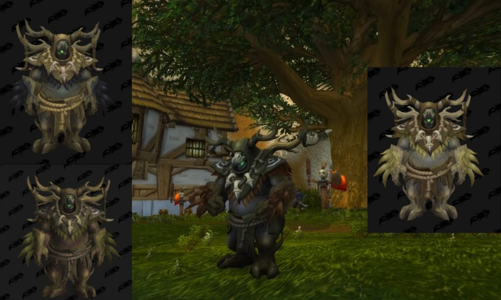 Kul Tiran human druid moonkin form