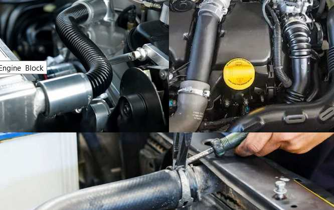 A Brief Guide on AN Hoses and Fittings for Car Enthusiasts