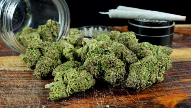 Buy weed online in Canada without traveling anywhere