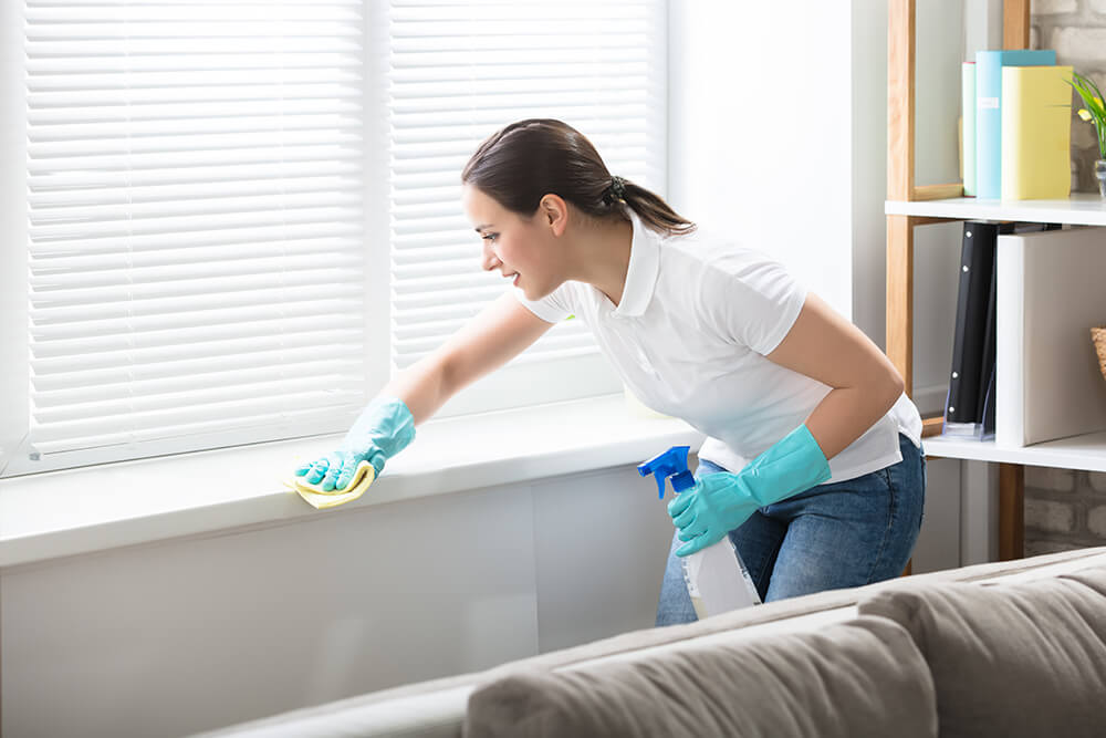 Cleaning service software