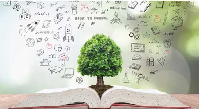 Professional development for teacher success