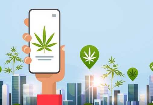 Things to know about the online Canada dispensary