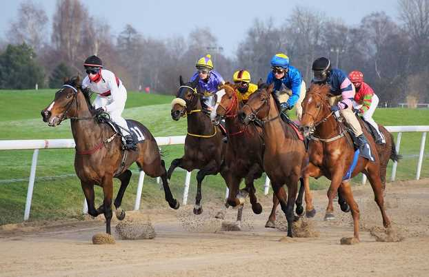 How Horse Racing Betting Works: Everything You Need to Know
