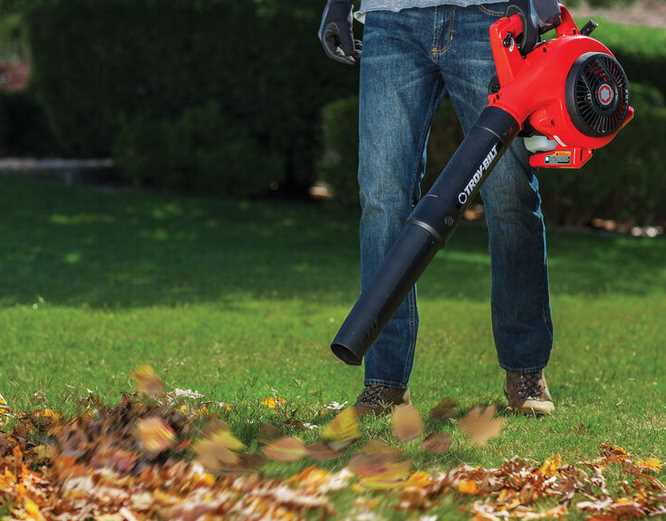 Step by step instructions to Buy The Best Leaf Blower – Top Tips