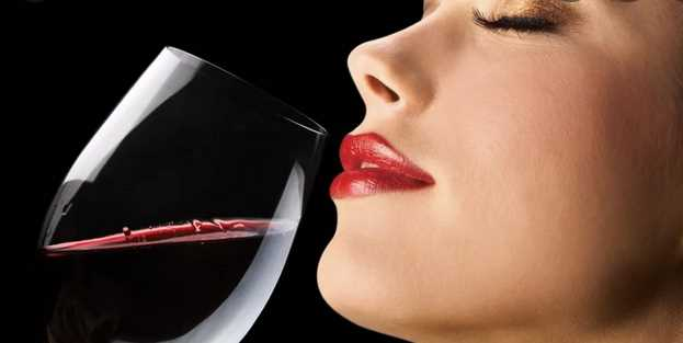 The Beauty of Red Wine – A Beginner's Guide