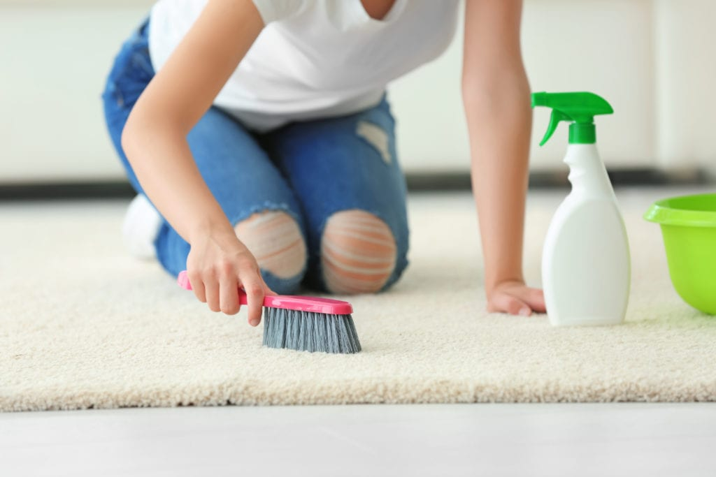 Top 5 New Ideas You Can Use To Keep Your Carpet Clean