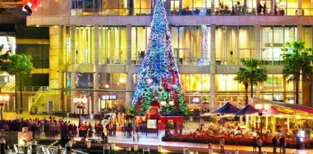 Unique Christmas Celebration in Sydney